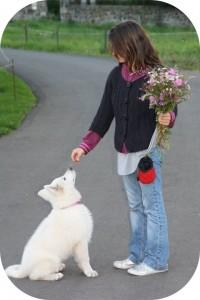 conseil-en-education-liza-bouquet-fleurs-ba